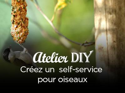 Atelier DIY | Self-service pour oiseaux