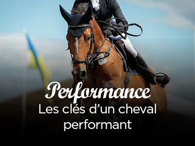 Les clés d'un cheval performant !