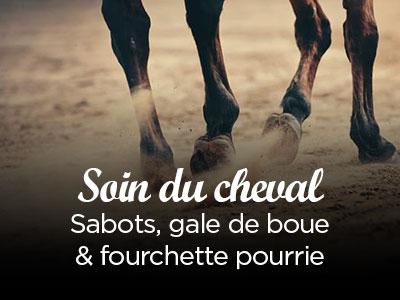 Soins du cheval : sabots humides, fourchettes et gales de boue
