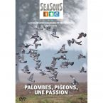 DVD PALOMBES PIGEON UNE PASSION