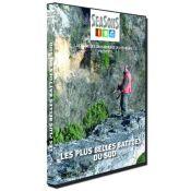 DVD LES PLUS BELLES BATTUES DU SUD