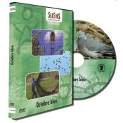 DVD OCTOBRE BLEU