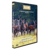 DVD GRAND GIBIER AU GARDE A VOUS