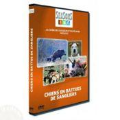 DVD CHIEN EN BATTUE DE SANGLIE