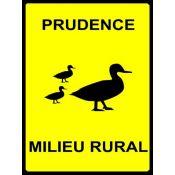 PLAQUE PRUDENCE CANARDS