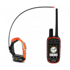 PACK GARMIN ALPHA 100 + T5 MINI