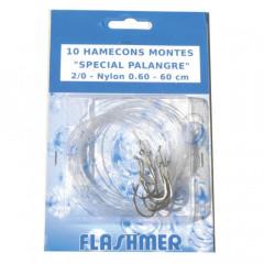 HAMECON MONTE PALANGRE