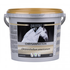 CHRYSANPHYTON CIRCULATION SANGUINE