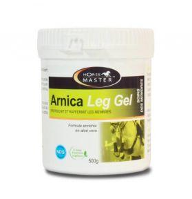 ARNICA LEG GEL 500GR