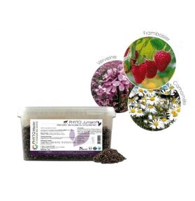PHYTO JUMENT 1KG