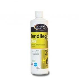 TENDILEG GEL 500ML