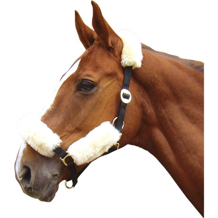 FOURREAU DE TETIERE MERINO HARRY S HORSE