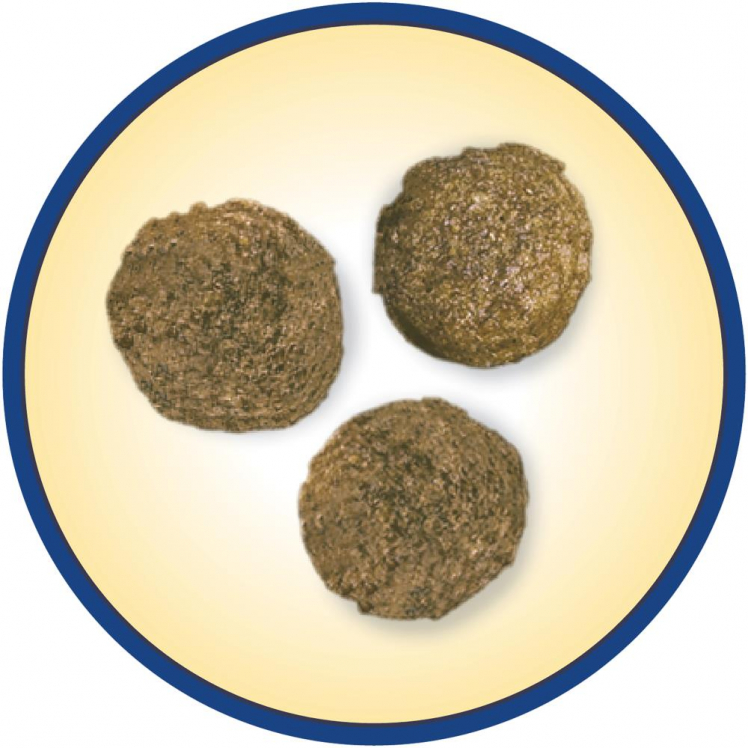 CROQUETTES COMPLET 14KG DOG CHOW