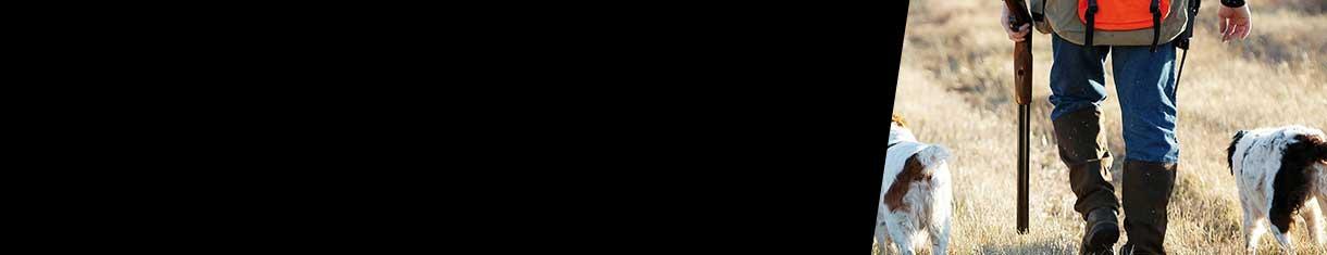 image-category