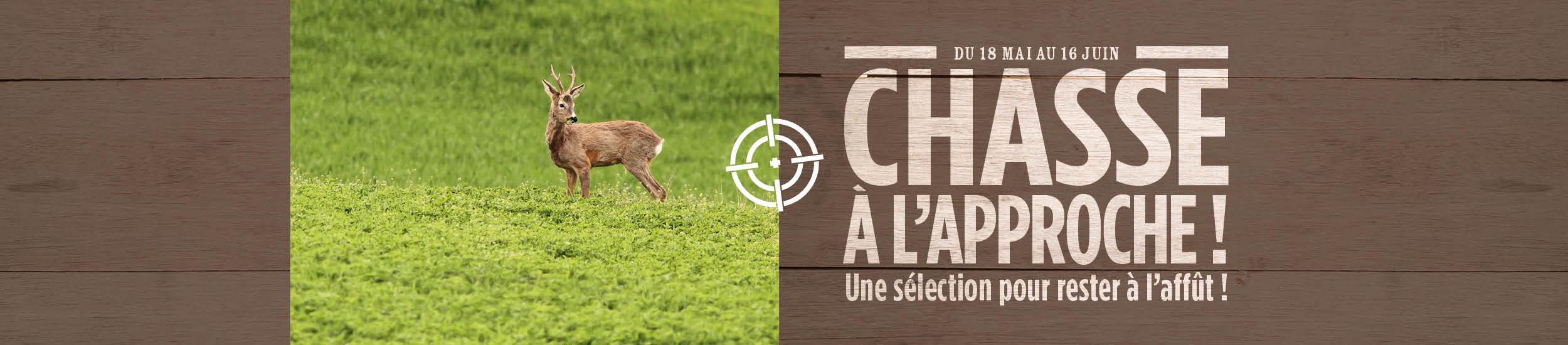CHASSE A L'APPROCHE