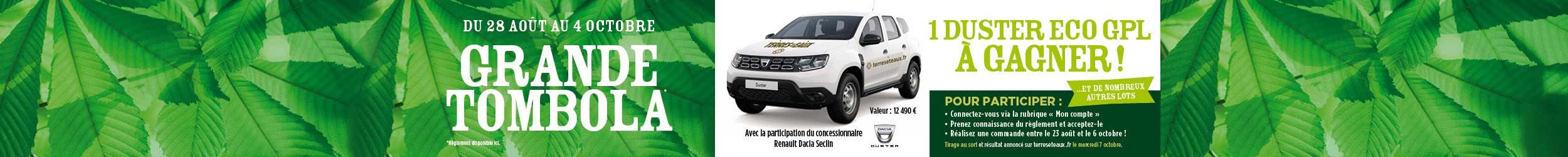 Tombola Dacia Duster